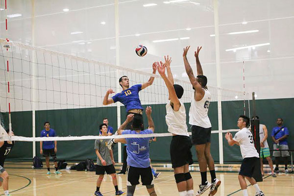 UCI Campus Recreation - Anteater Club Sports
