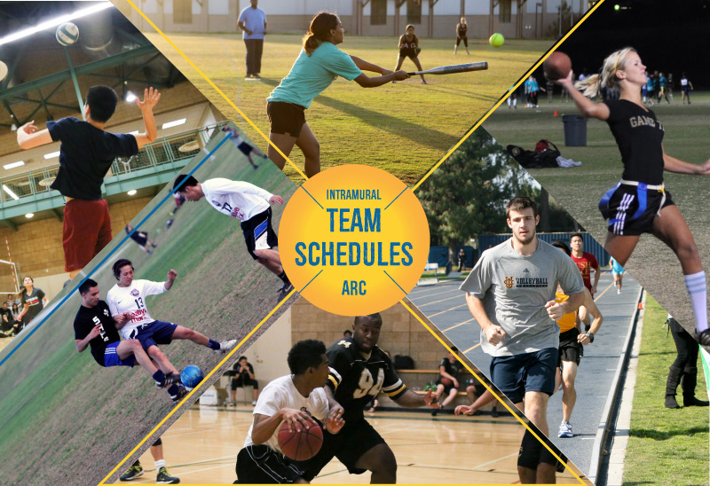 UCI Campus Recreation - Intramural Sports League Picture