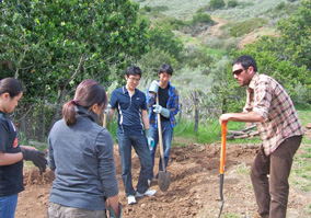 UCI Campus Recreation - Outdoor Adventure Catalina Service Project Picture